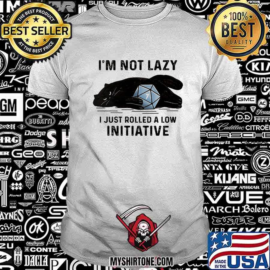 Cat I'm not lady I just rolled a low initiative shirt