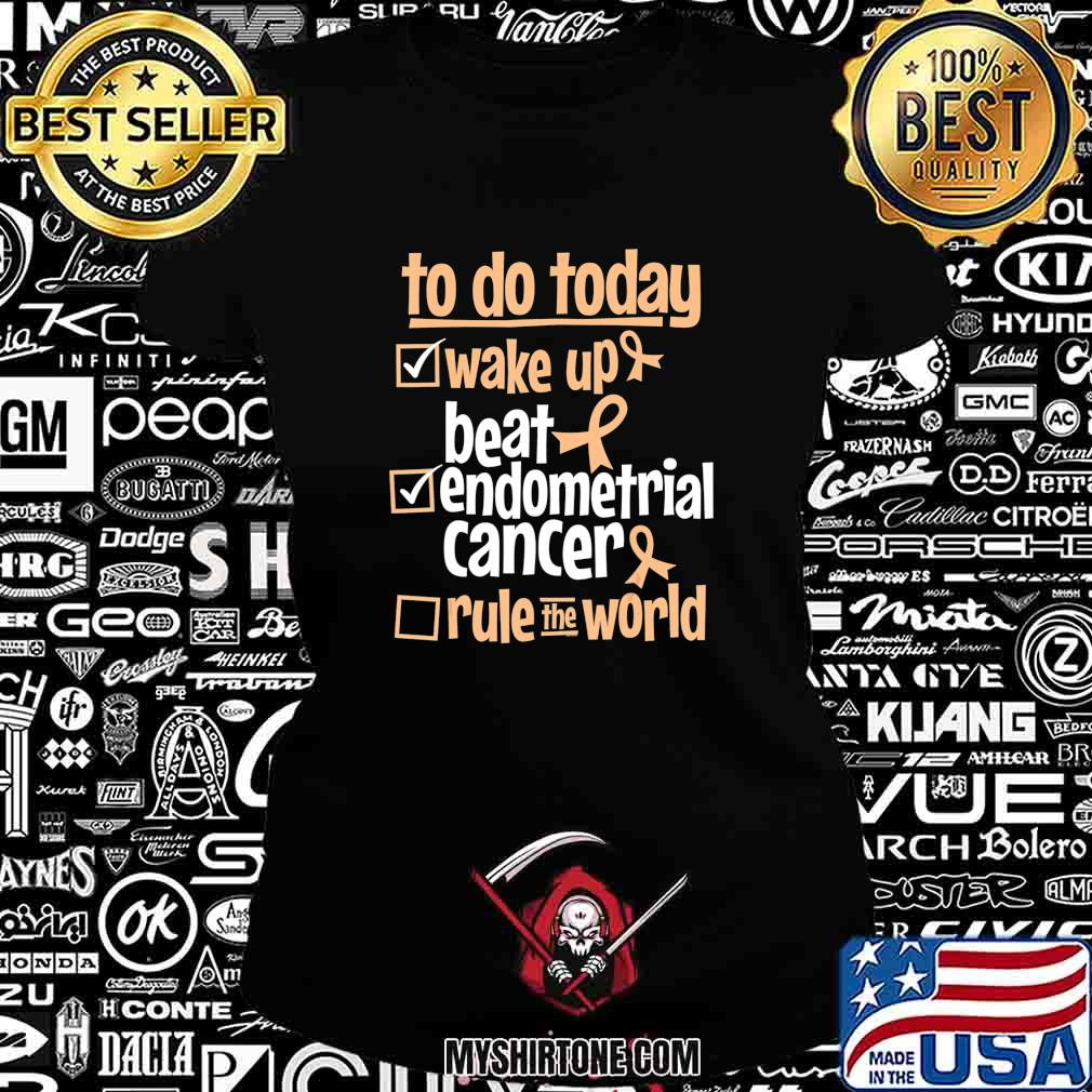 Funny Beat Endometrial Cancer Rule the World - Survivor Gift T-Shirt Ladiestee